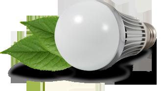 bulb-header-image